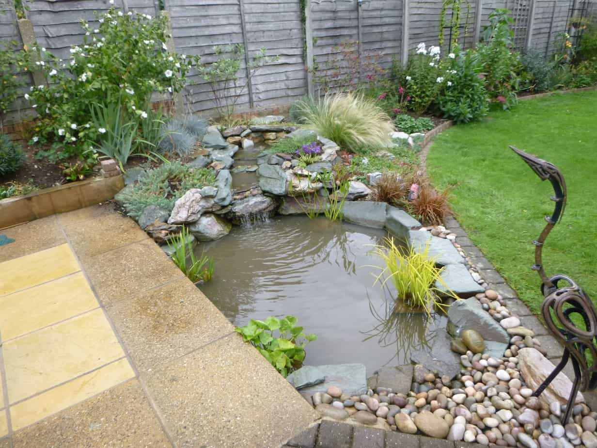 Small pond with stones and pebbles