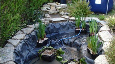 DIY miniature pond