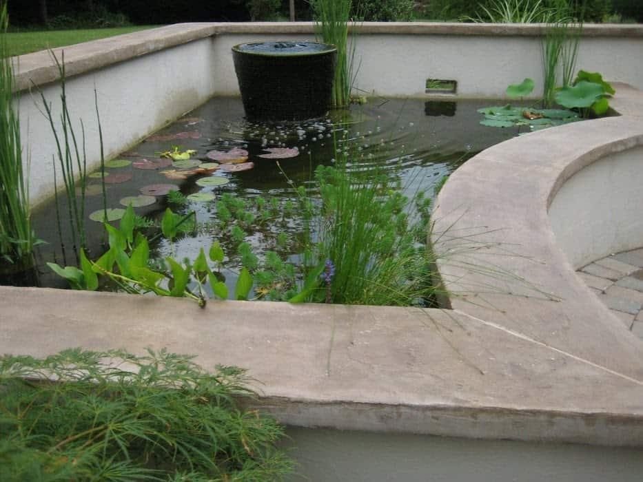 Ultimate koi corner pond
