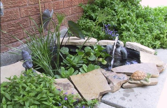 A cute, tiny water feature with a frog stone statue and water lilies