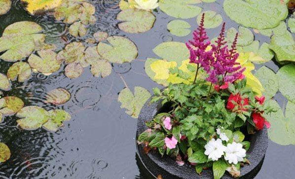 Floating pond island