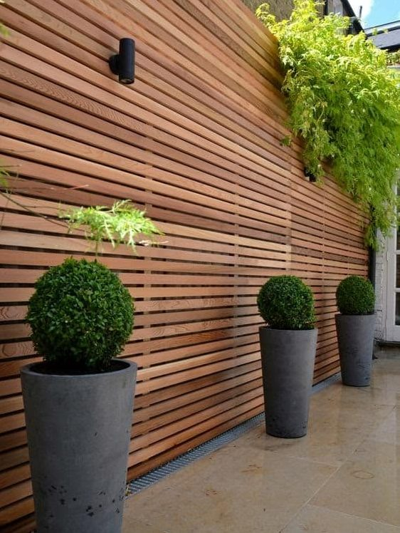 Tall, wooden fencing with some hanging plants