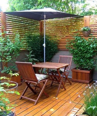 Climbing plants on a wooden screen for added privacy