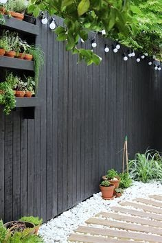 Black fencing, giving off a more contemporary feel.