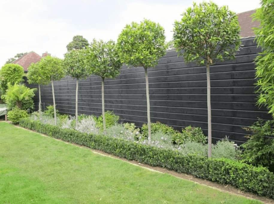 Plain wooden screens with well-pruned trees around