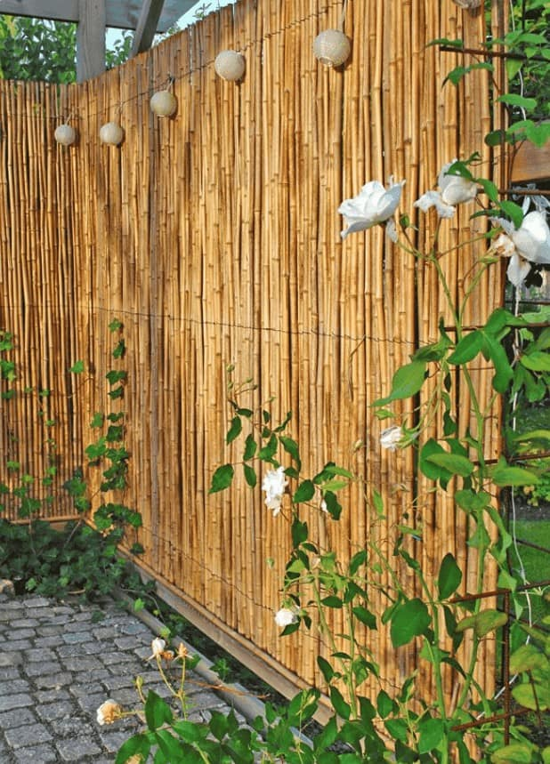 Oriental vibes outdoor space with bamboo fencing