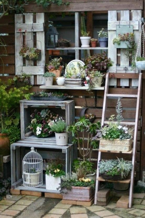 Flowers, shelving and shutters