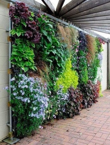 Multicolour flower wall