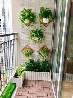 Mini balcony garden with hanging plants