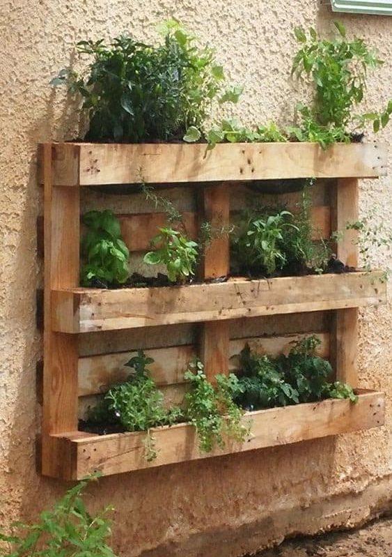 Wooden pallet transformed into a vertical garden