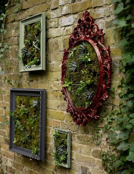Plants in picture frames