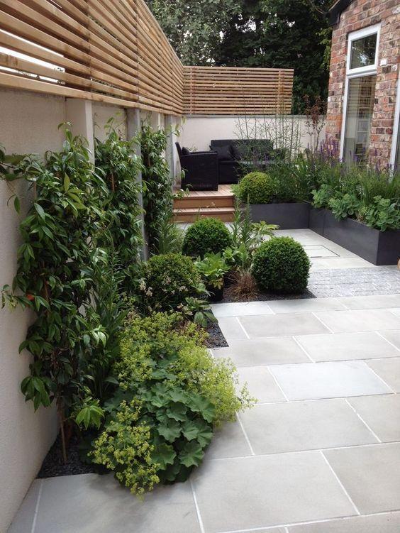 slim modern garden
