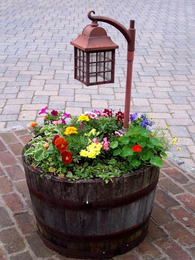 wood barrel planter