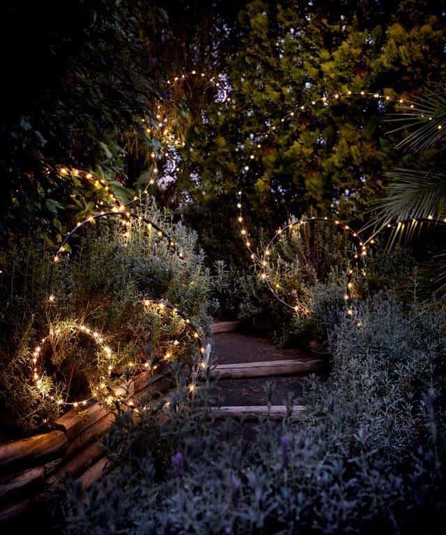 swirling garden lights