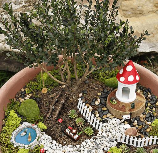 Bonsai Tree fairy garden