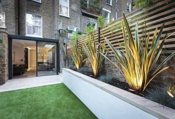 fence planters with spikey plants