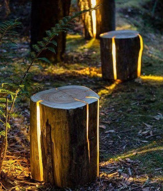 light logs
