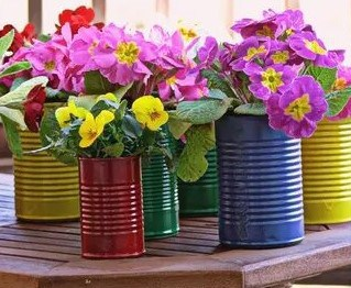 multicoloured recycled cans with flowers