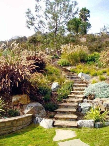 Stone steps into the hillside