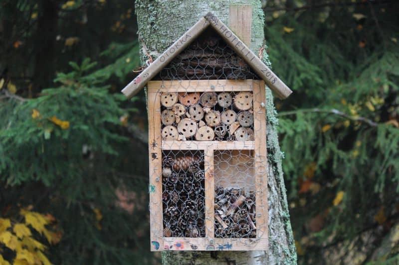 bug hotel against a tree in the shape of a birdbox