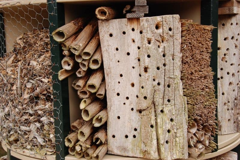 bug hotel with wire grating, tubes, and wood with holes in it