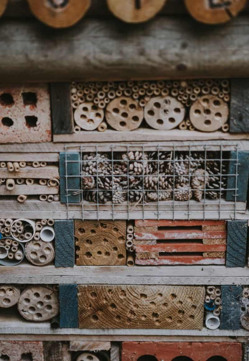 bug hotel with pinecones behind grates in between pallets