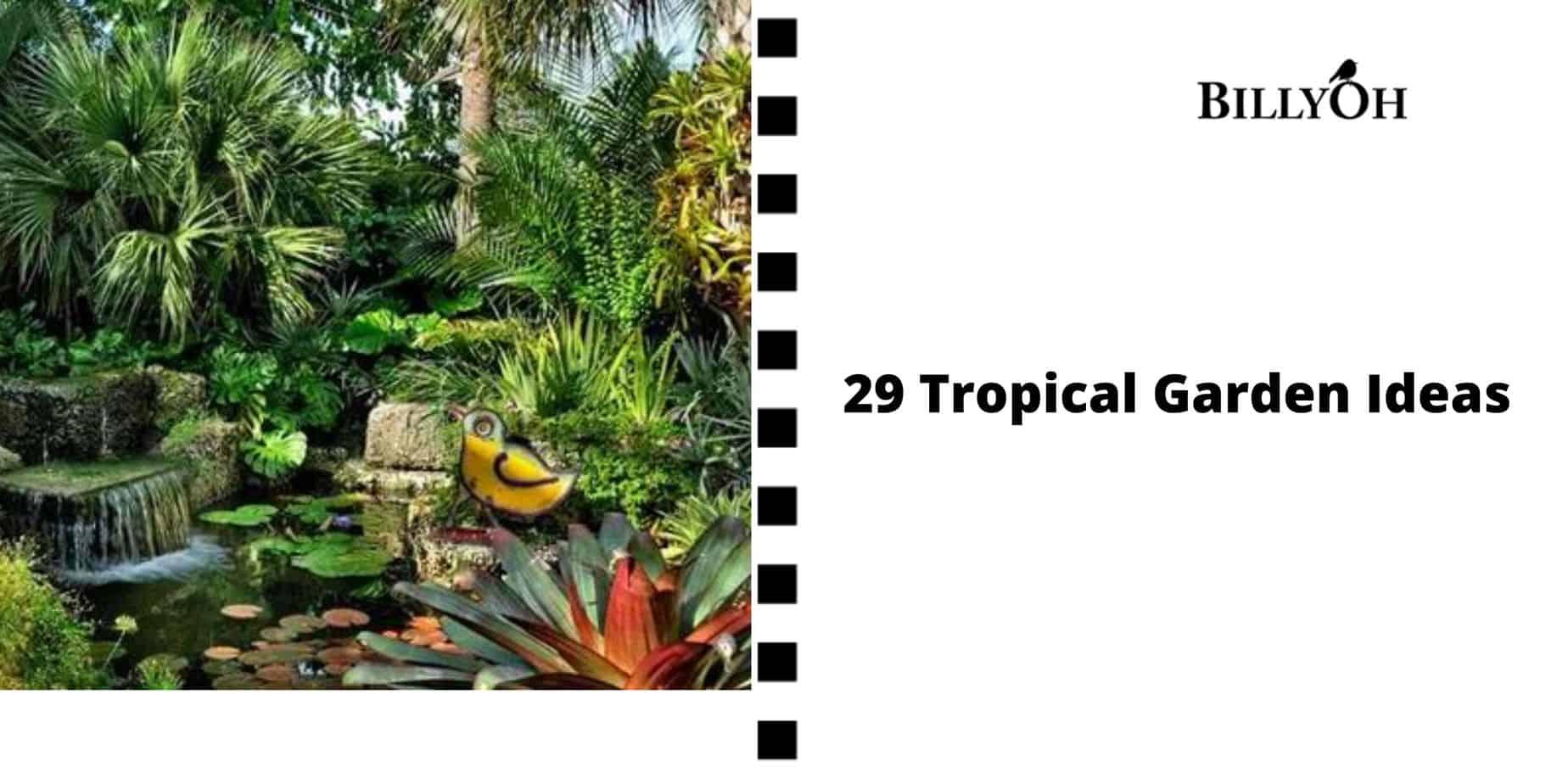 29 Tropical Garden Ideas BillyOh