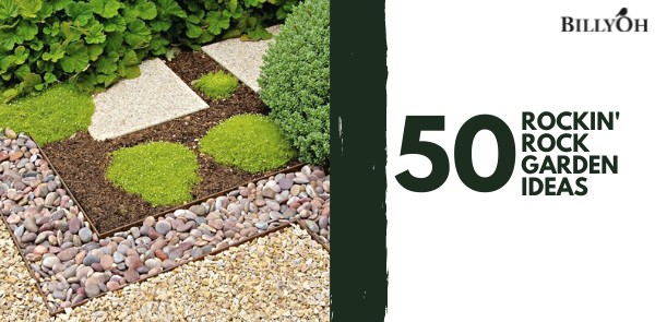 50 Rock Garden Ideas