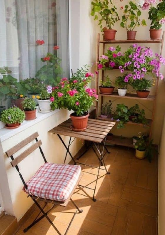Plant pots in window ledges and shelving