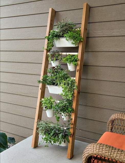 Vertical garden on steps