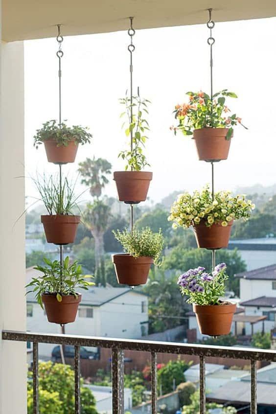 A mini herb garden, hanging plants