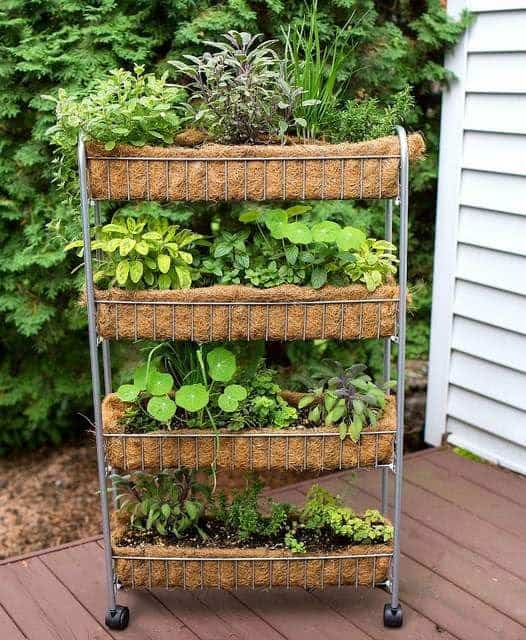 Vertical movable garden