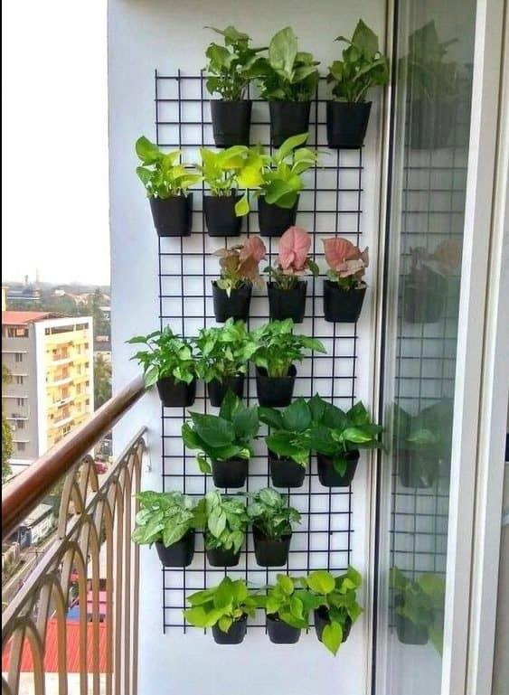Narrow wall with pots