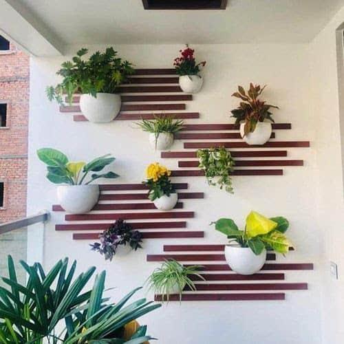 Appealing wall garden