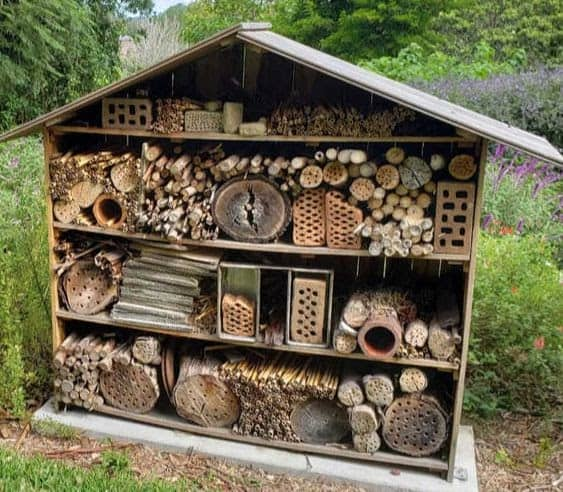 Bug hotel for the insects