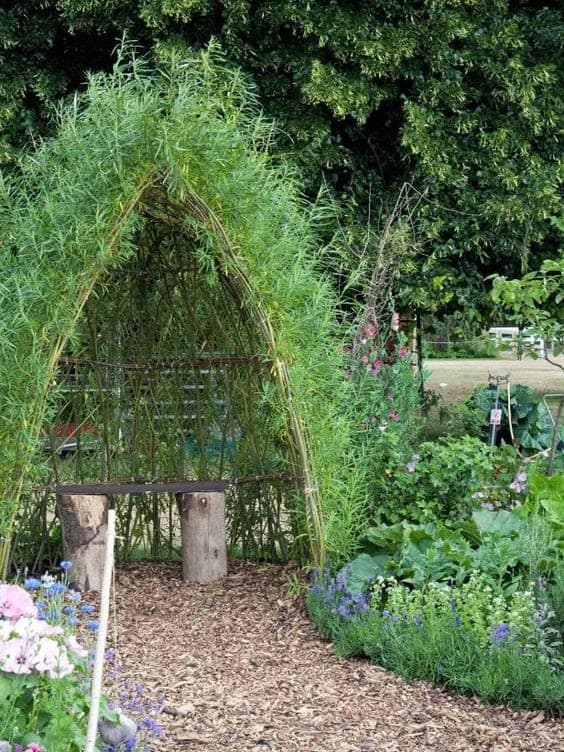 Trellis shelter with bench