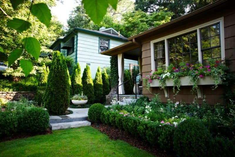 small hedges and tall cone shaped trees outside a clapperboard house
