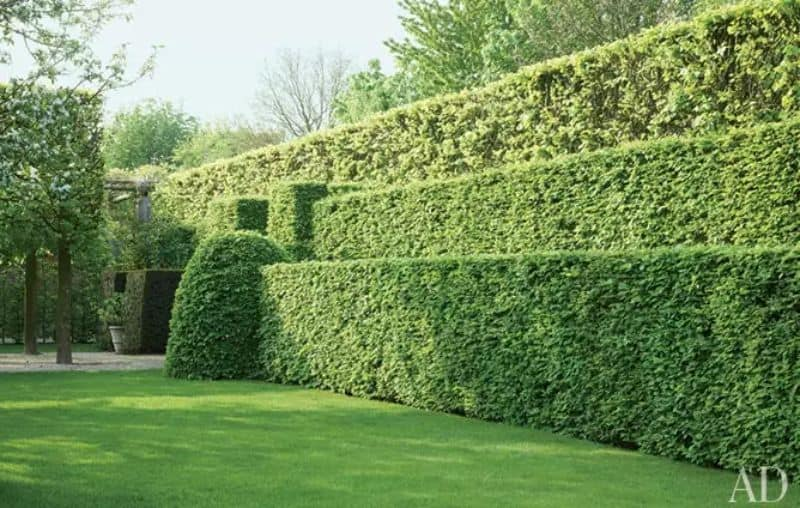 Stacked hedges or brick-like hedges, mimicking the look of a garden staircase
