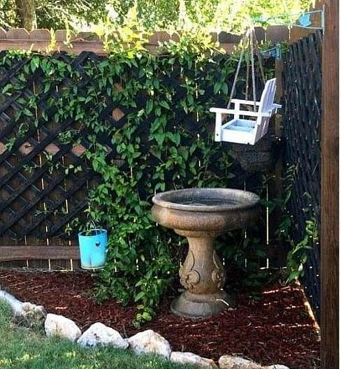 A corner garden with a bird bath and feeder