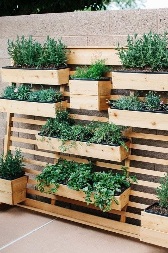 Modern vertical herb garden
