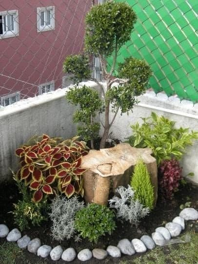 A tree stump as a part of a flower bed design