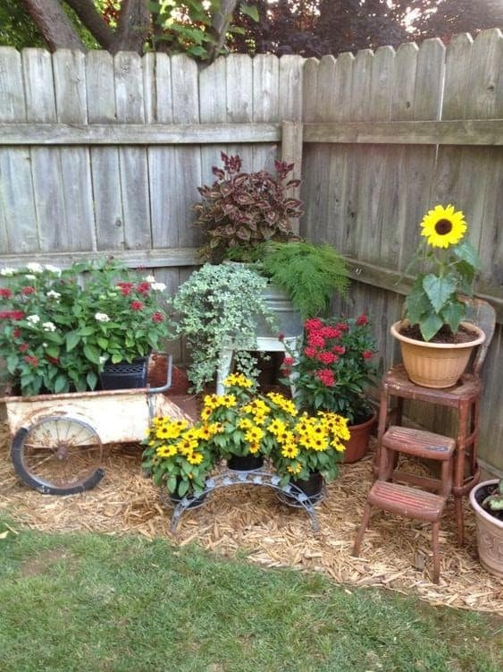 A colourful corner garden with brightly coloured flowers
