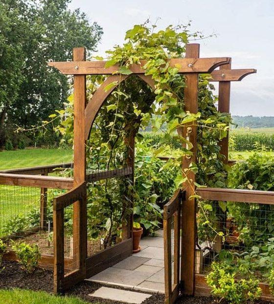 Arched wooden trellis