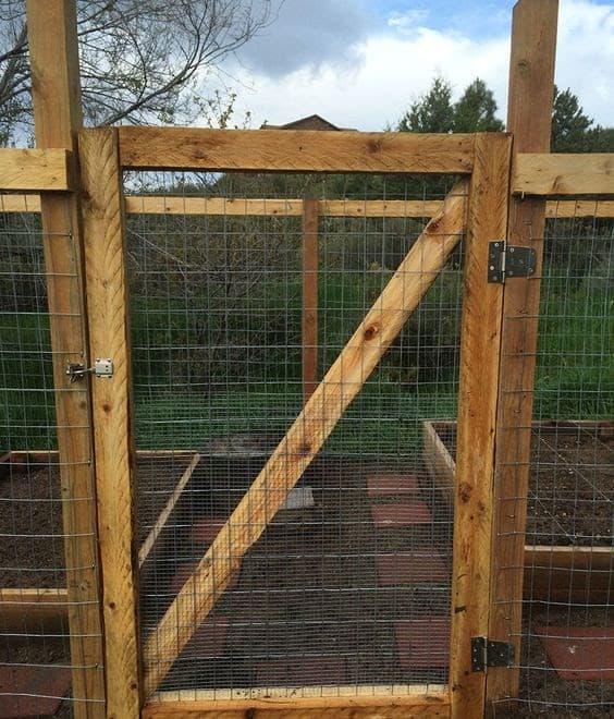 Gate for vegetable garden