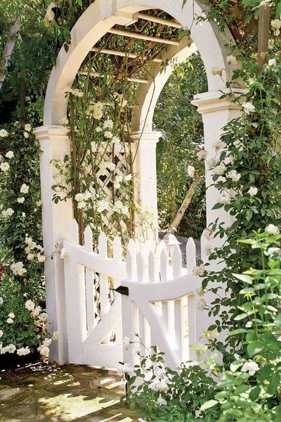 White fence and gate with white flowers