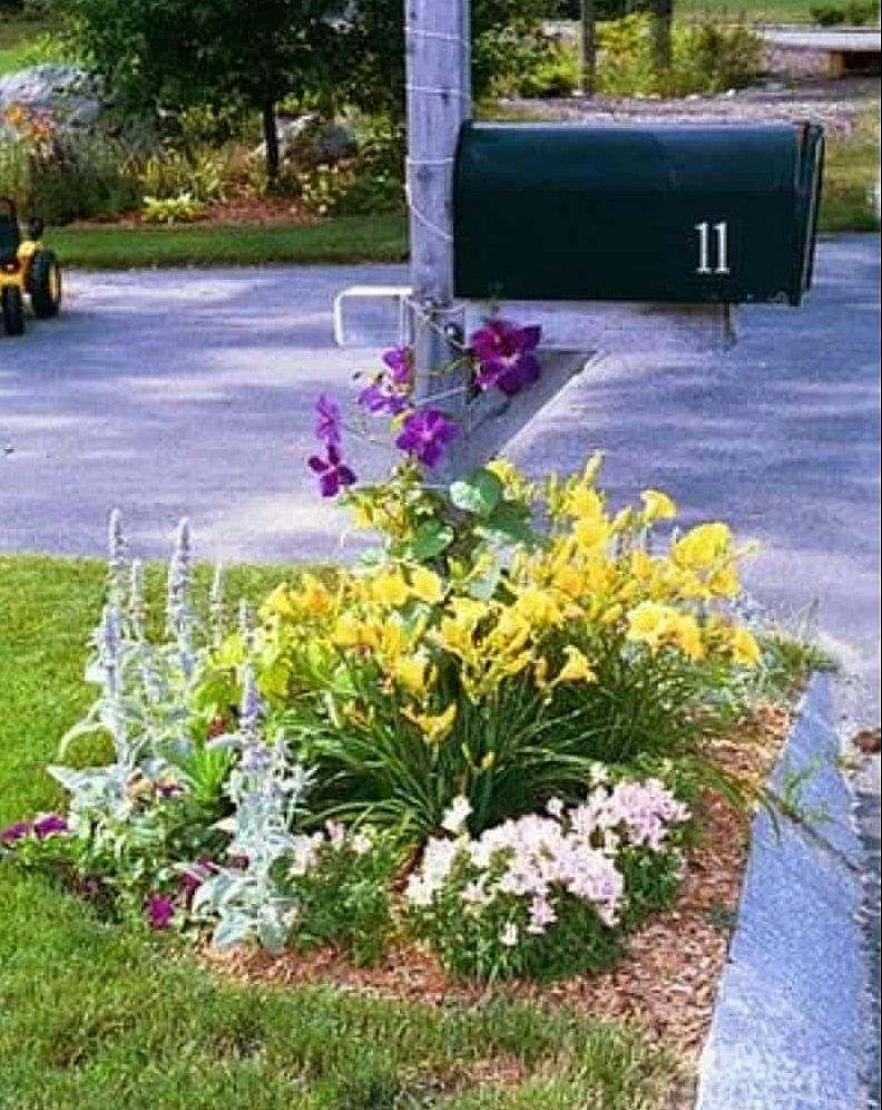 A mailbox surrounded with a variety of flowers