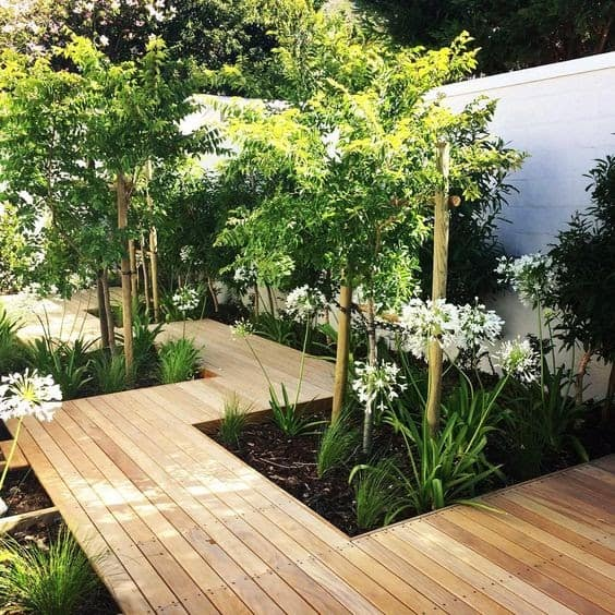 A modern wooden pathway and tall plants and trees