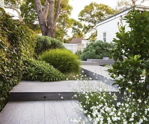 Multiple levels of decking and plants