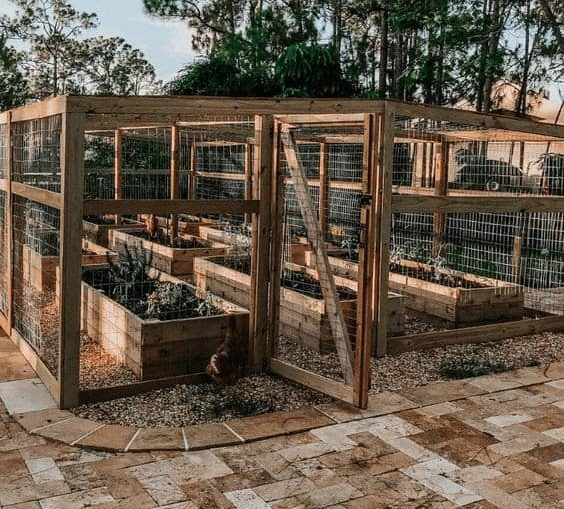 A wooden greenhouse in a backyard