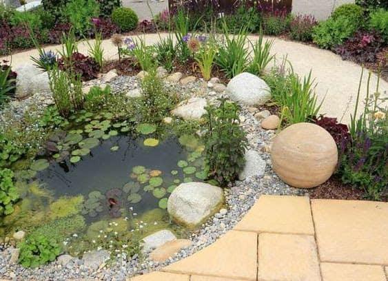 Rocks and pond